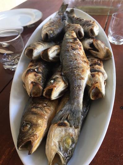 Fisch Kroatien Omis