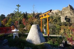 Japanischer Garten im Botanischen Garten.