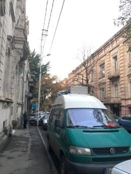 Mr. Turtle in Tbilisi.