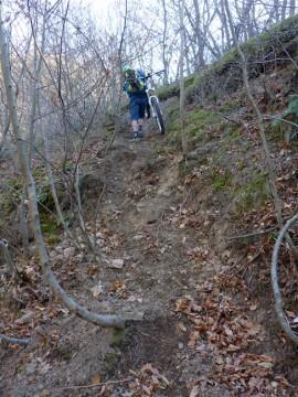 Im Wald ist der Weg fas von Beginn an unfahrbar.