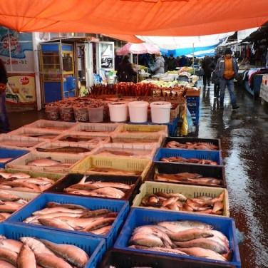 Fisch, Fisch oder Fisch?