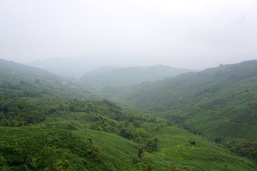 Blick in die Landschaft.