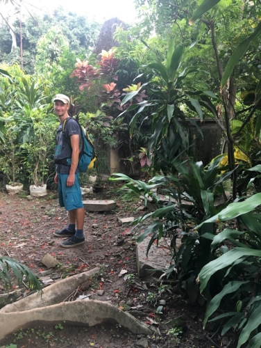 Eini im Friedhofsdschungel.