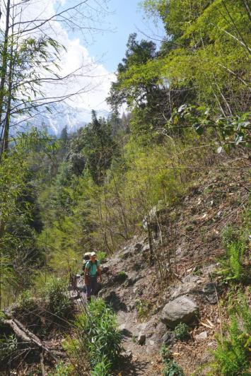 Alternativer Trail.