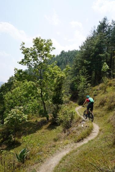 Der Trail auf dem Weg nach Namo Buddha.