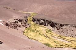 Wasser in der Wüste.