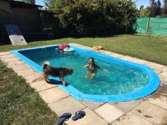 Der Pool.
